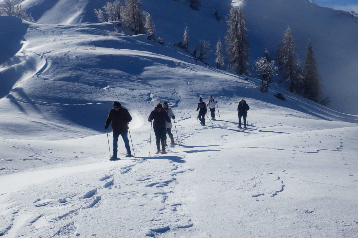 Snowshoeing from Bled lake