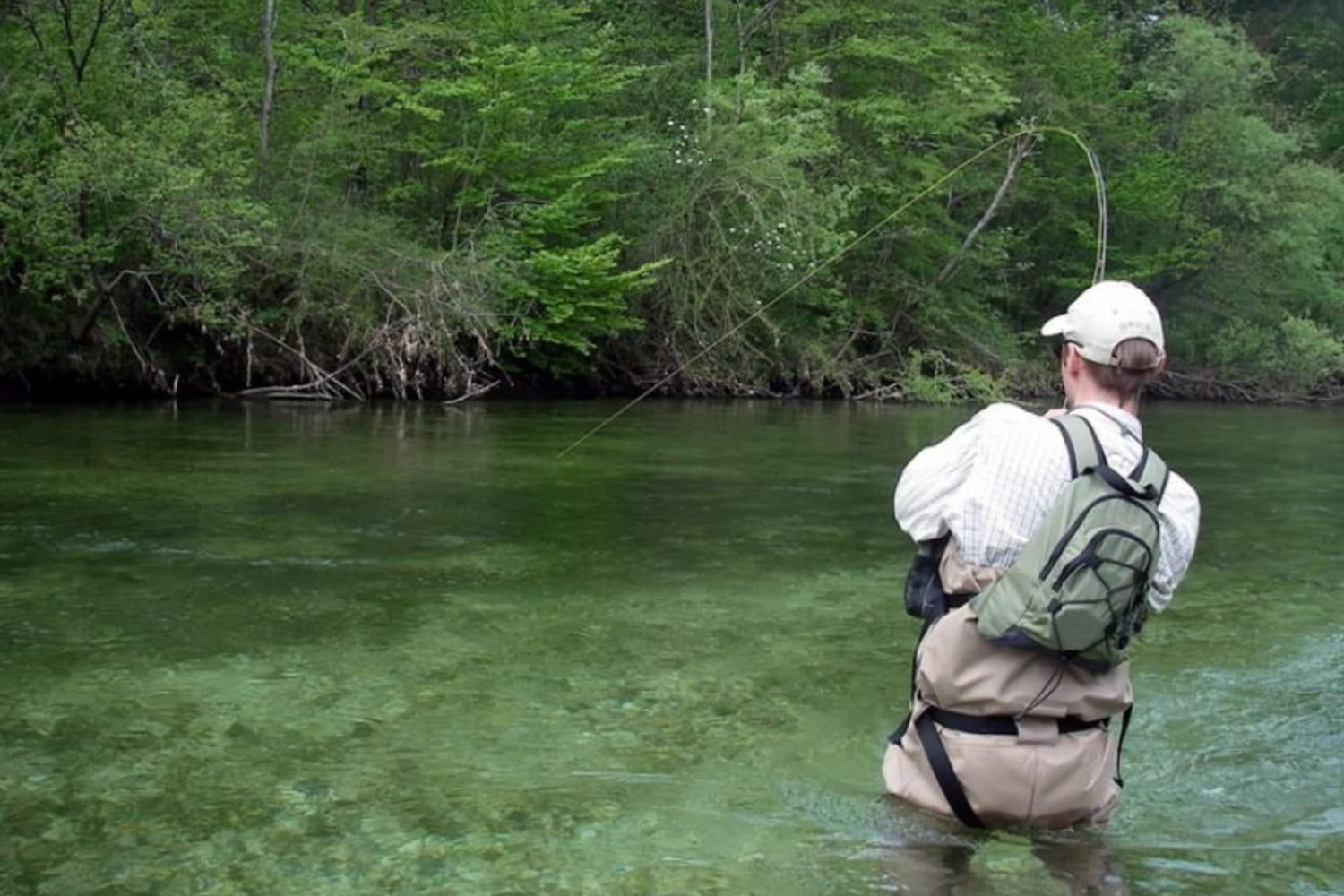 Fly fishing in Sava river
