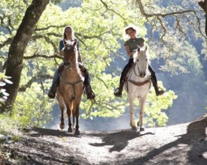 Horse riding in Bled and Triglav National Park