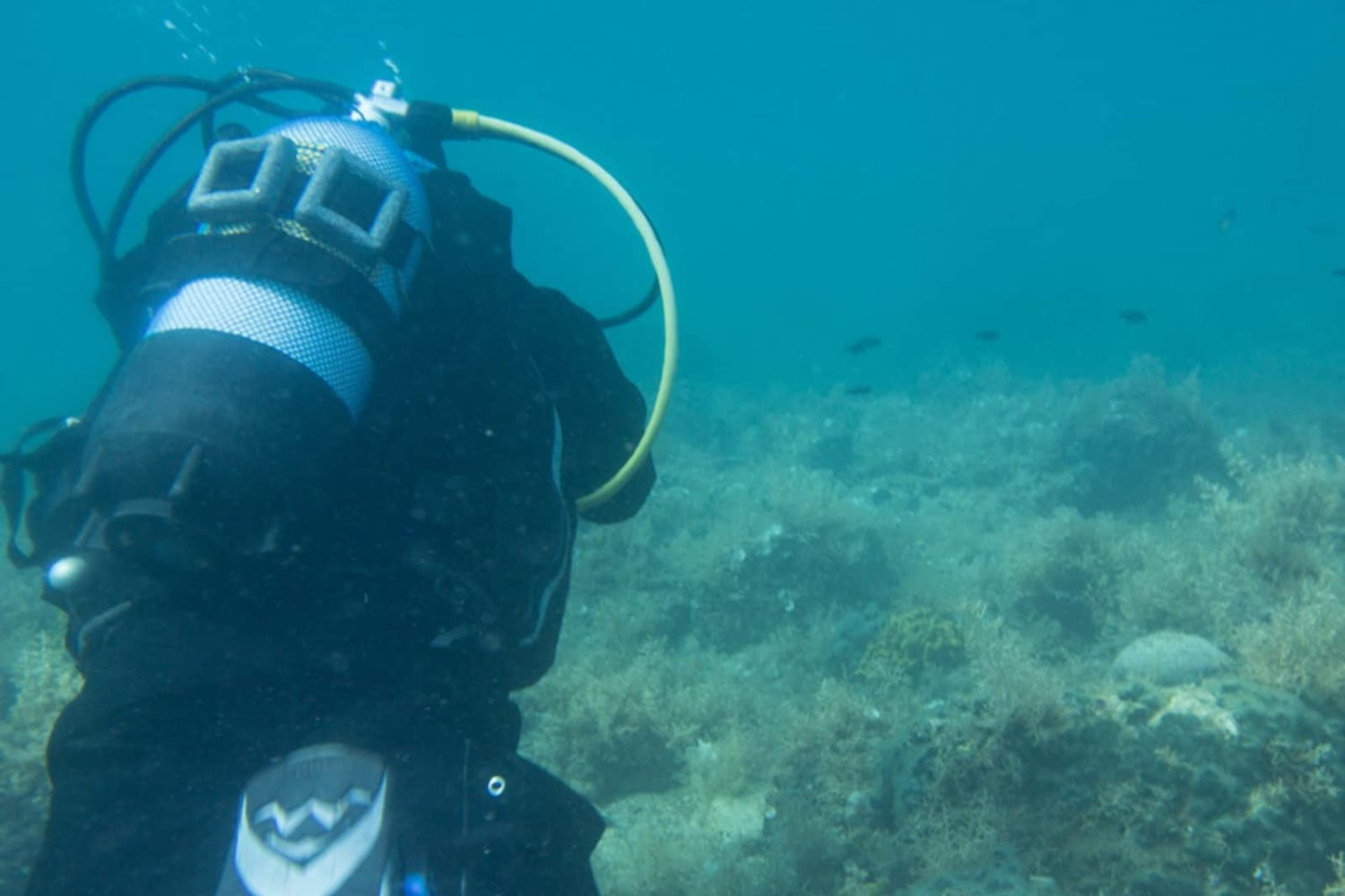 Scuba diving in Bled lake