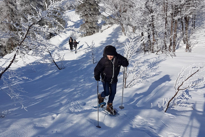 Snowshoeing in Slovenija