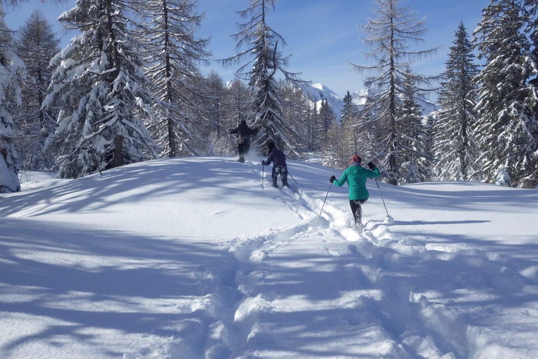 Winter trips in slovenia