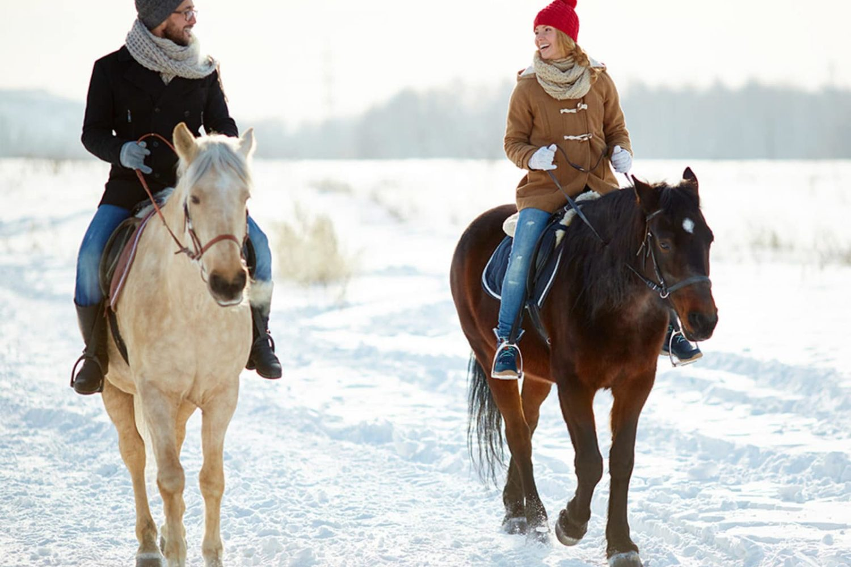 Winter horse riding in Slovenija