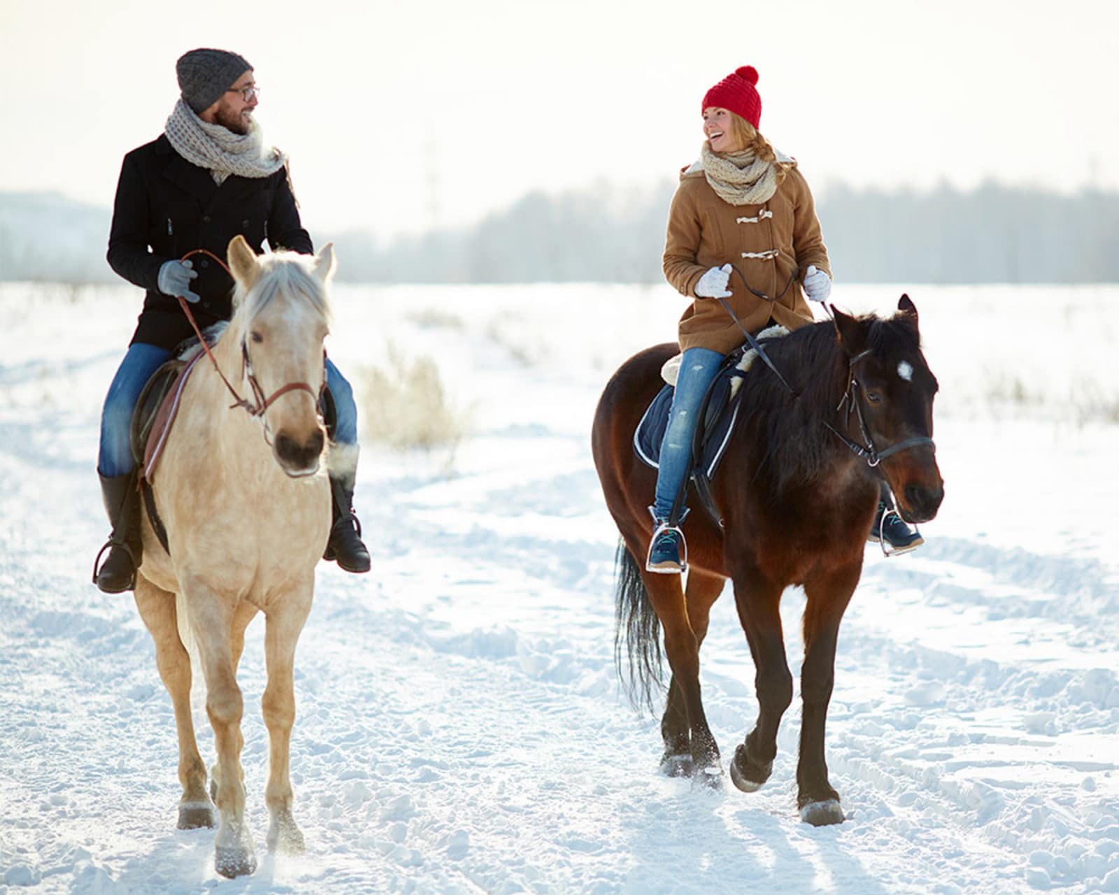 Winter Horse Riding In Bled Activities In Slovenia From Bled Ljubljana