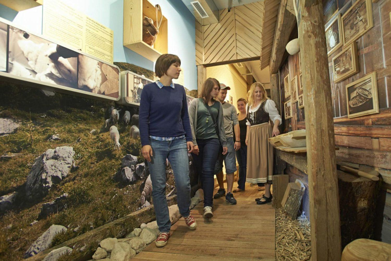Slovenia alpine history tour from Ljubljana or Bled